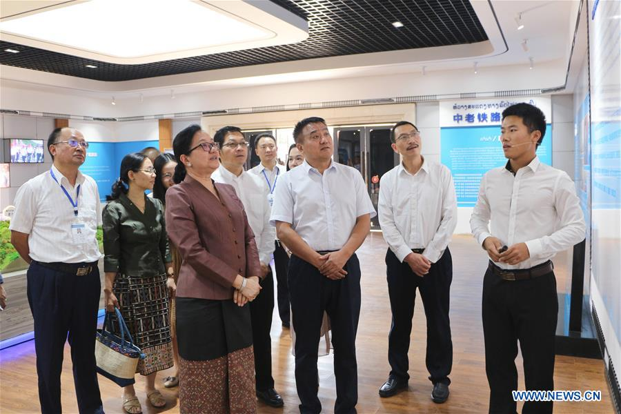 Lao official speaks highly of China-Laos railway construction progress